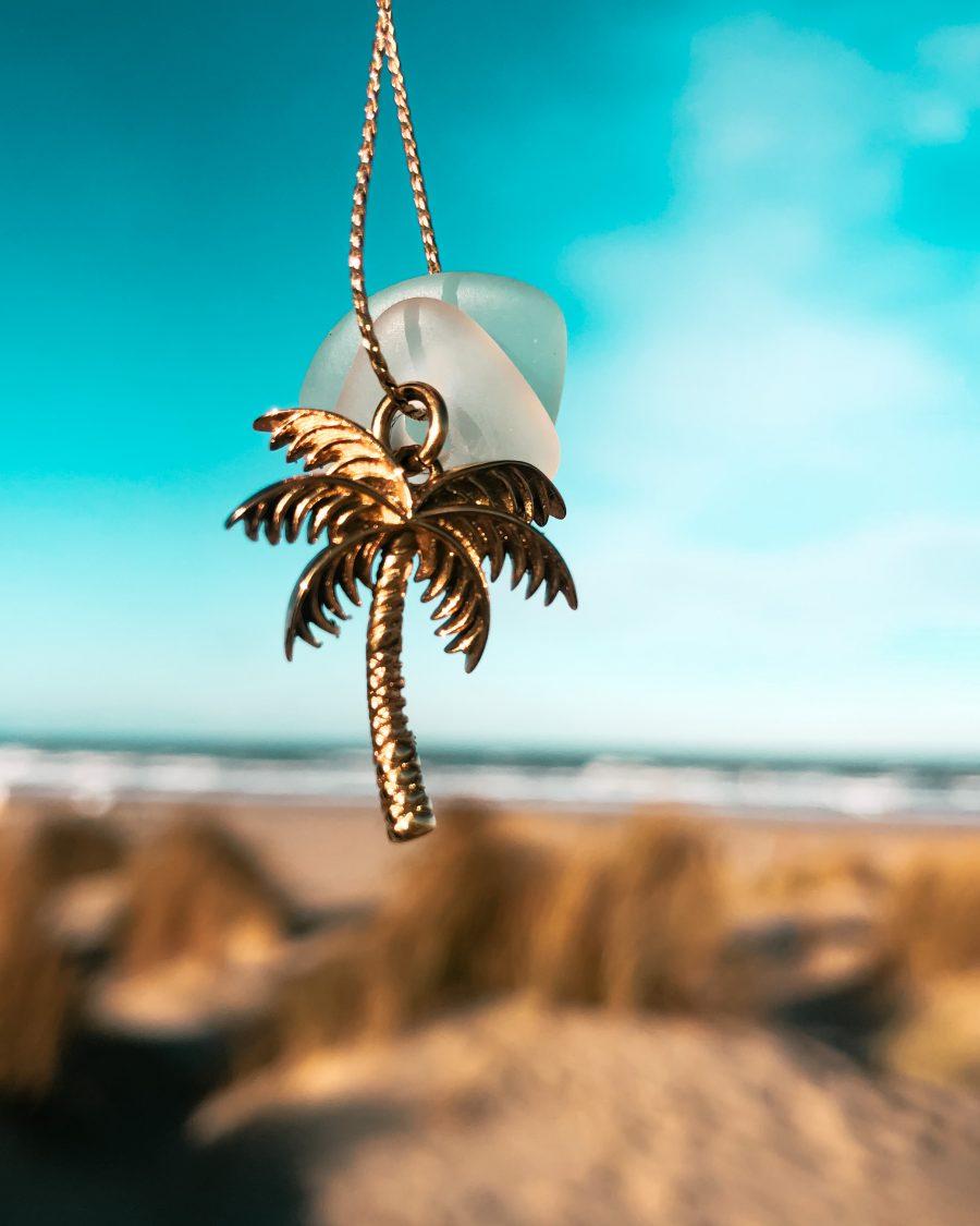 palmboom voor blauwe lucht