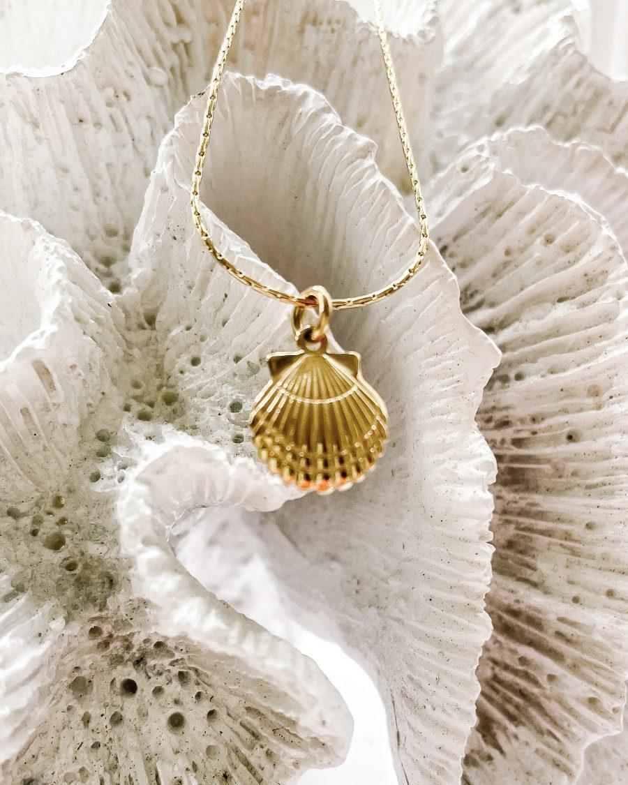 bedel-schelp-goud