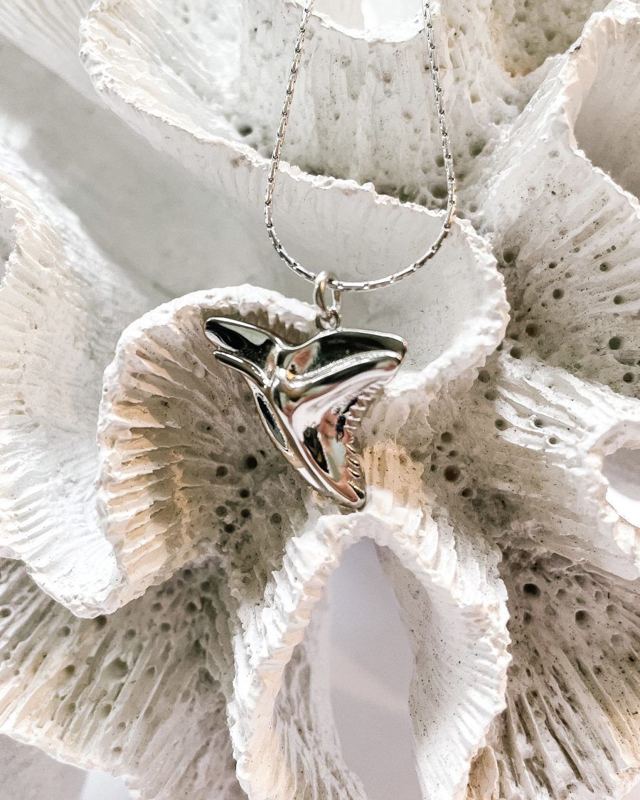 haainetandketting-zilver