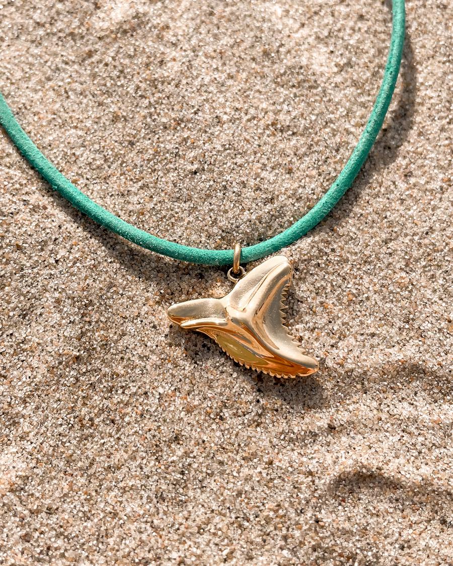 wander-haaientand-goud-zand